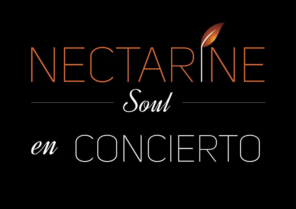 Escola de Música Moderna - Nectarine Soul